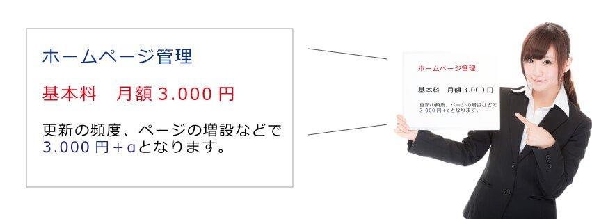 ホームページ更新 基本料月額3.000円