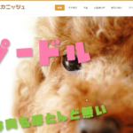 ホームページ制作「山口県萩市のトイプードル専門店|ロイヤルカニッシュ」